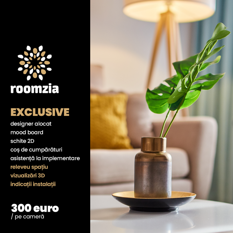 roomzia exclusive