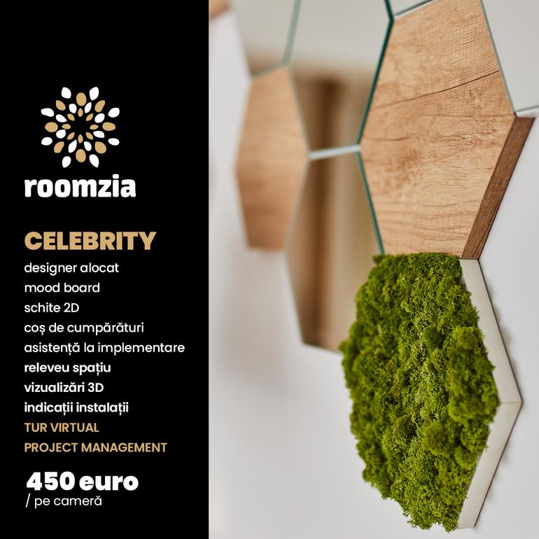 roomzia celebrity